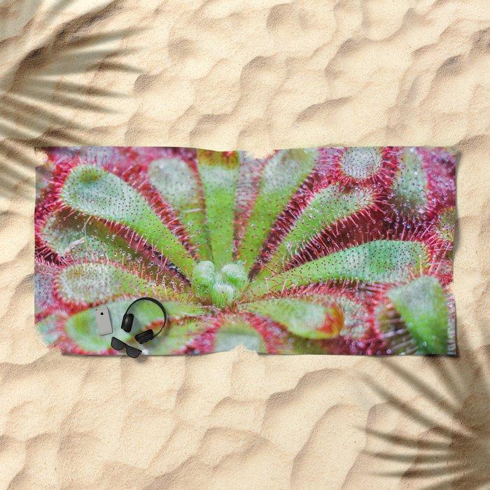Drosera Beach Towel