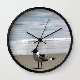 Ocracoke Seagull  1 Wall Clock