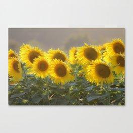 Sunflower Happy Canvas Print