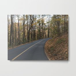 winding path Metal Print