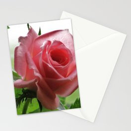 SPDesign 56 Stationery Cards