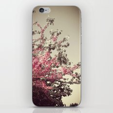 Vintage Blossoms iPhone & iPod Skin
