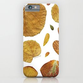 Natural Autumn Leaves on Red Velvet Background iPhone Case