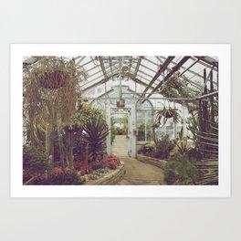 Allan Gardens Conservatory II Art Print