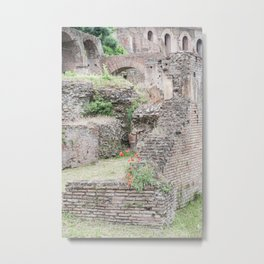 Poppies in Ancient Rome, Italy Metal Print