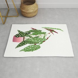 Polka Dot Begonia Potted Plant in White Rug