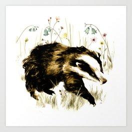 Bluebell Badger Art Print