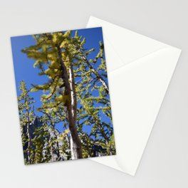 Golden Larches - The Enchantments, Washington State Stationery Cards