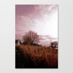 Where the Birds Weep Canvas Print