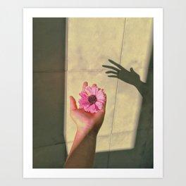 Shadow Art Print