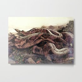 """""""Kaa"""" the Giant Python from Kiplings Tales of the Jungle Metal Print"""