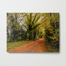 Autumn Avenue Metal Print