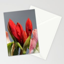 Attractive Options Stationery Cards