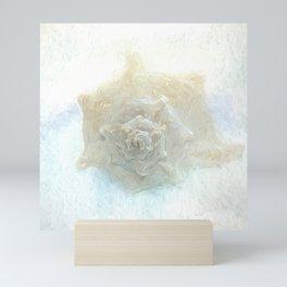 Sea Shell Pastel Mini Art Print