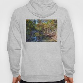 Lost Maples Hoody