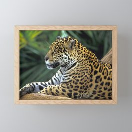 Gracious Marvelous Grown Fearsome Relaxing In Territory Zoom UHD Framed Mini Art Print