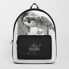 FALCON PEREGRUNUS Backpack