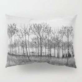mindscapes Pillow Sham