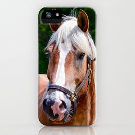 Equine Beauty iPhone Case