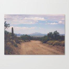 Down Desert Roads Canvas Print