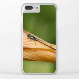 Macro Photography Clear iPhone Case
