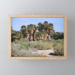 Pathway To a Desert Oasis Coachella Valley Wildlife Preserve Framed Mini Art Print