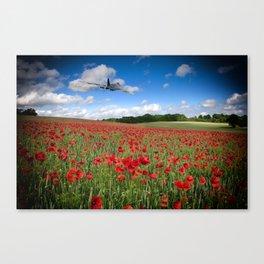 Vulcan Poppy Pass Canvas Print