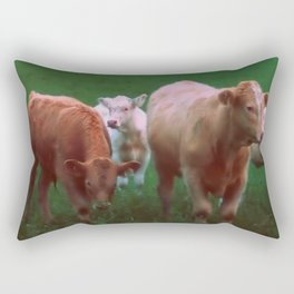Friendly Curiosity Rectangular Pillow