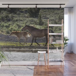 A Bay and Her Colt Running By The Waterhole Wall Mural