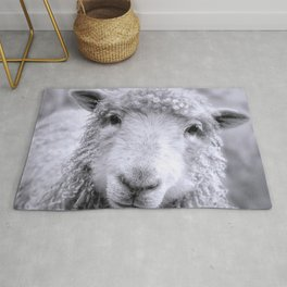 Ready For Your Closeup? Icelandic Sheep Face Rug