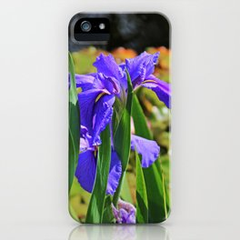 An igniting Attraction I iPhone Case