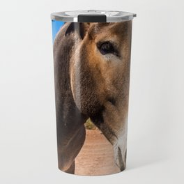 Approach of a donkey in its natural habitat Travel Mug