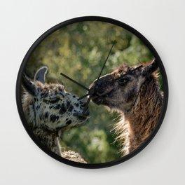 Sweet Llamas Wall Clock