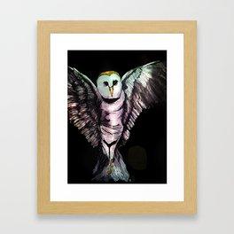 Diamond Eyes  Framed Art Print