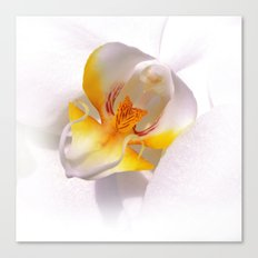 orchid macro IV Canvas Print