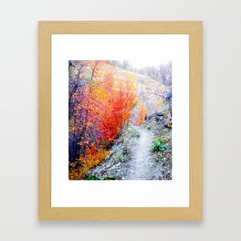 The beauty of the north. Framed Art Print
