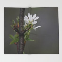 Twig and Blossom Throw Blanket
