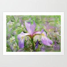 Iris Illusion  Art Print