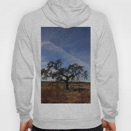 Lone Oak Tree, Laguna de Santa Rosa, Sonoma County Hoody