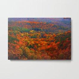 Amicalola Autumn in the Blue Ridge Mountains Metal Print