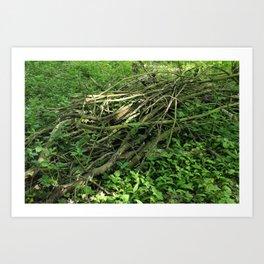 Sticks in the Woods Art Print