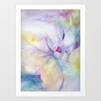 White Cat Sleeping Art Print