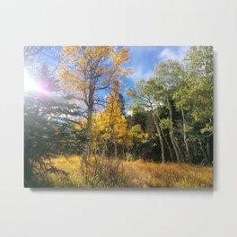 Golden Sun-ray Metal Print
