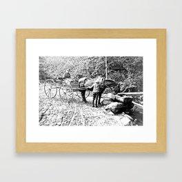 Vintage Adirondacks: The Roadside Watering Trough Framed Art Print