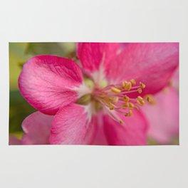 Little Pink Flower Rug