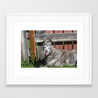 greyhound Framed Art Prints featuring Greyhound by Kamilla