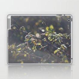 Nettles Laptop & iPad Skin