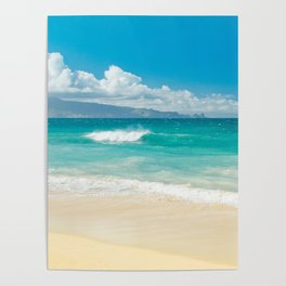 Hawaii Beach Treasures Poster