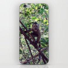 Monkey Sanctuary – Monkey with attitude iPhone & iPod Skin