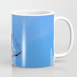 Clear Sight (Bald Eagle) Coffee Mug